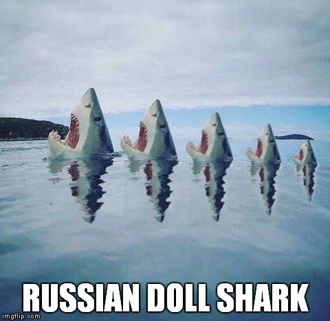 RUSSIAN DOLL SHARK | made w/ Imgflip meme maker