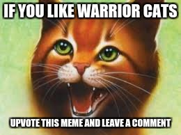 Warrior cats Firestar | IF YOU LIKE WARRIOR CATS UPVOTE THIS MEME AND LEAVE A COMMENT | image tagged in warriors,warrior,warrior cats,warrior cats meme,cats | made w/ Imgflip meme maker