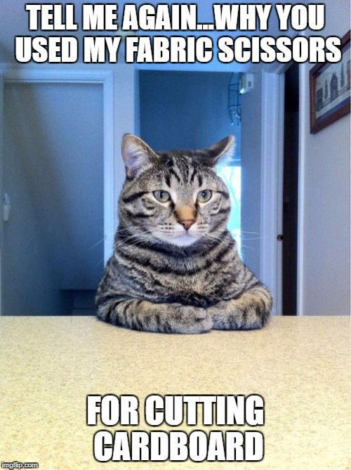Take A Seat Cat Meme | TELL ME AGAIN...WHY YOU USED MY FABRIC SCISSORS FOR CUTTING CARDBOARD | image tagged in memes,take a seat cat | made w/ Imgflip meme maker