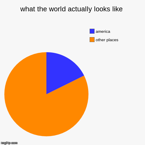 what the world actually looks like | other places, america | image tagged in funny,pie charts | made w/ Imgflip chart maker