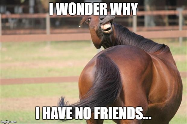 funny horse | I WONDER WHY I HAVE NO FRIENDS... | image tagged in funny horse | made w/ Imgflip meme maker