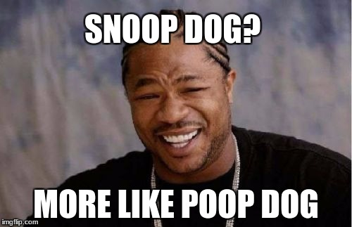 Yo Dawg Heard You Meme | SNOOP DOG? MORE LIKE POOP DOG | image tagged in memes,yo dawg heard you | made w/ Imgflip meme maker