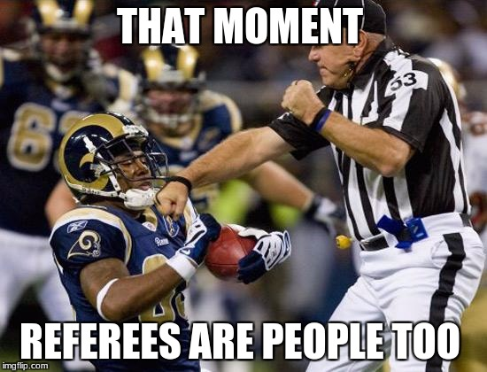 nfl donkey punch | THAT MOMENT REFEREES ARE PEOPLE TOO | image tagged in nfl donkey punch | made w/ Imgflip meme maker