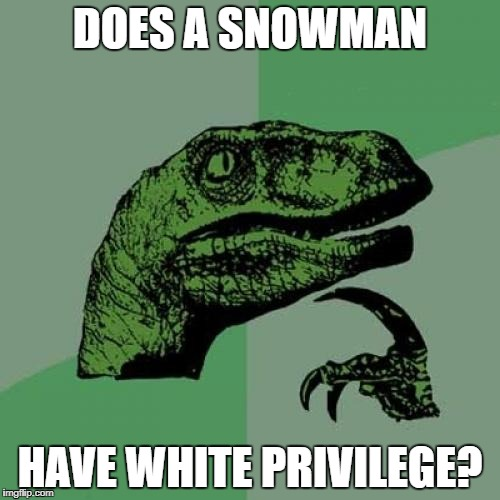 Philosoraptor Meme | DOES A SNOWMAN HAVE WHITE PRIVILEGE? | image tagged in memes,philosoraptor | made w/ Imgflip meme maker