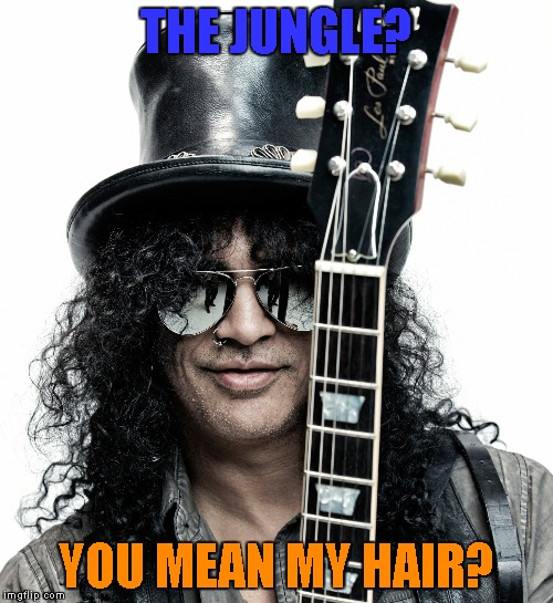 THE JUNGLE? YOU MEAN MY HAIR? | made w/ Imgflip meme maker