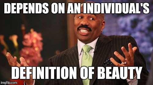 Steve Harvey Meme | DEPENDS ON AN INDIVIDUAL'S DEFINITION OF BEAUTY | image tagged in memes,steve harvey | made w/ Imgflip meme maker