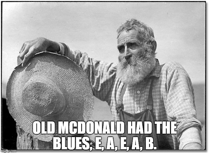 OLD MCDONALD HAD THE BLUES, E, A, E, A, B. | image tagged in farmer | made w/ Imgflip meme maker