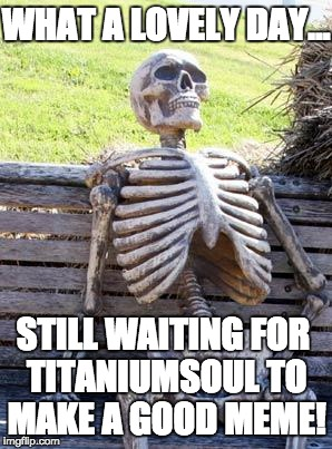 Waiting Skeleton Meme | WHAT A LOVELY DAY... STILL WAITING FOR TITANIUMSOUL TO MAKE A GOOD MEME! | image tagged in memes,waiting skeleton | made w/ Imgflip meme maker