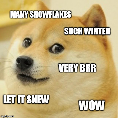 Doge Meme | MANY SNOWFLAKES SUCH WINTER VERY BRR LET IT SNEW WOW | image tagged in memes,doge | made w/ Imgflip meme maker