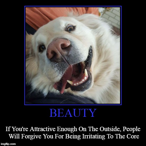 BEAUTY | If You're Attractive Enough On The Outside, People Will Forgive You For Being Irritating To The Core | image tagged in funny,demotivationals | made w/ Imgflip demotivational maker