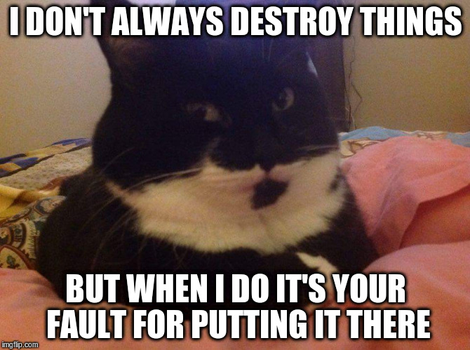 WeenerAlwaysDoesStuff | I DON'T ALWAYS DESTROY THINGS BUT WHEN I DO IT'S YOUR FAULT FOR PUTTING IT THERE | image tagged in weeneralwaysdoesstuff | made w/ Imgflip meme maker
