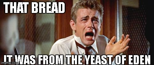 THAT BREAD IT WAS FROM THE YEAST OF EDEN | image tagged in tearing me apart | made w/ Imgflip meme maker