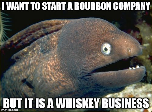 Bad Joke Eel Meme | I WANT TO START A BOURBON COMPANY BUT IT IS A WHISKEY BUSINESS | image tagged in memes,bad joke eel | made w/ Imgflip meme maker