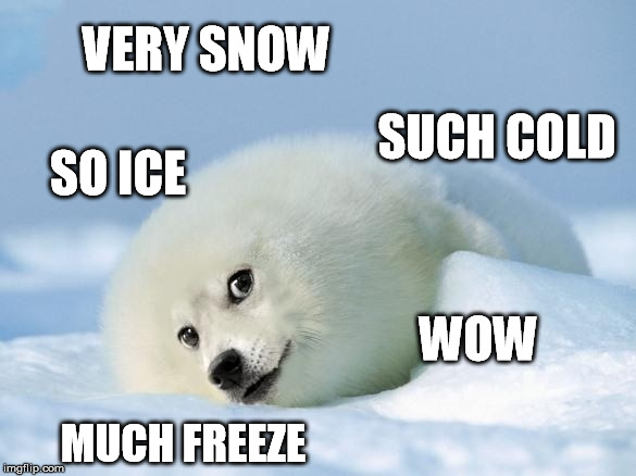 VERY SNOW MUCH FREEZE SO ICE SUCH COLD WOW | made w/ Imgflip meme maker