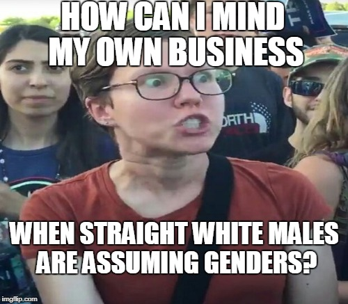 HOW CAN I MIND MY OWN BUSINESS WHEN STRAIGHT WHITE MALES ARE ASSUMING GENDERS? | made w/ Imgflip meme maker
