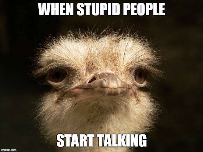 WHEN STUPID PEOPLE START TALKING | image tagged in stupid people | made w/ Imgflip meme maker