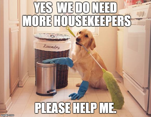 YES  WE DO NEED MORE HOUSEKEEPERS PLEASE HELP ME. | image tagged in house cleaning | made w/ Imgflip meme maker