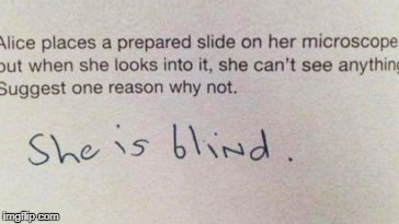 It Could Be True | image tagged in funny,memes,funny exam answers,kids,exams | made w/ Imgflip meme maker