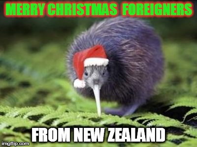 Christmas Kiwi | MERRY CHRISTMAS  FOREIGNERS FROM NEW ZEALAND | image tagged in kiwi,christmas,bird,santa | made w/ Imgflip meme maker