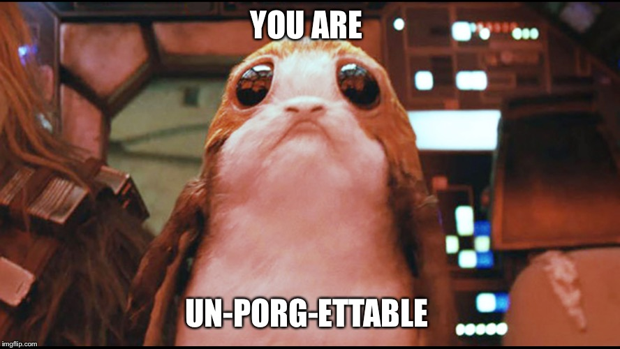 Porg | YOU ARE UN-PORG-ETTABLE | image tagged in star wars,the last jedi,porg,cute,fandom | made w/ Imgflip meme maker
