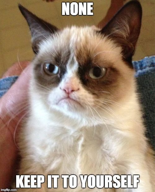 Grumpy Cat Meme | NONE KEEP IT TO YOURSELF | image tagged in memes,grumpy cat | made w/ Imgflip meme maker