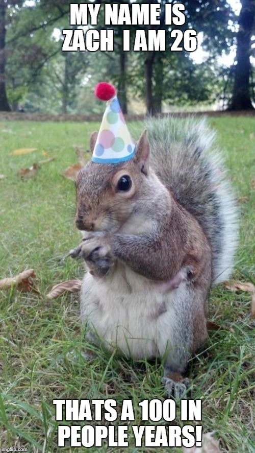 Super Birthday Squirrel |  MY NAME IS ZACH  I AM 26; THATS A 100 IN PEOPLE YEARS! | image tagged in memes,super birthday squirrel | made w/ Imgflip meme maker