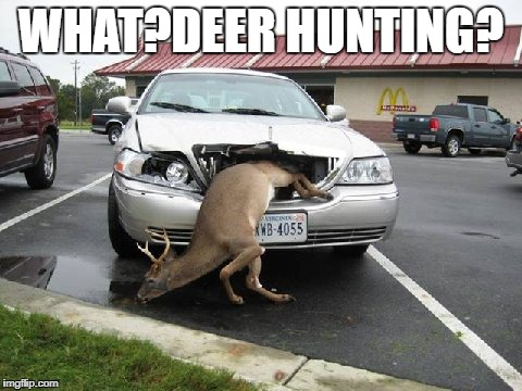 WHAT?DEER HUNTING? | made w/ Imgflip meme maker