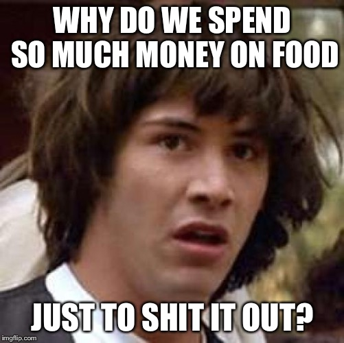 Conspiracy Keanu Meme | WHY DO WE SPEND SO MUCH MONEY ON FOOD JUST TO SHIT IT OUT? | image tagged in memes,conspiracy keanu | made w/ Imgflip meme maker