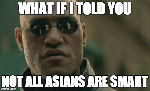 Matrix Morpheus Meme | WHAT IF I TOLD YOU NOT ALL ASIANS ARE SMART | image tagged in memes,matrix morpheus | made w/ Imgflip meme maker