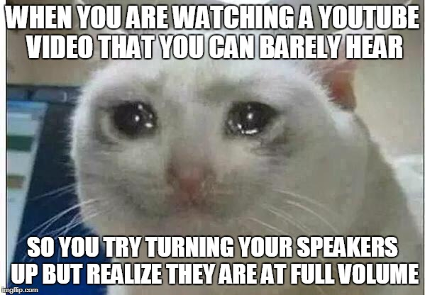 we all have had this problem once in our lives... | WHEN YOU ARE WATCHING A YOUTUBE VIDEO THAT YOU CAN BARELY HEAR SO YOU TRY TURNING YOUR SPEAKERS UP BUT REALIZE THEY ARE AT FULL VOLUME | image tagged in crying cat,relatable,funny,memes | made w/ Imgflip meme maker