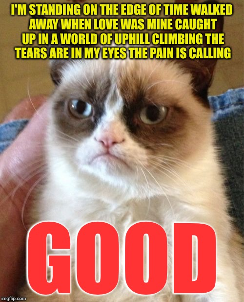 Grumpy Cat Meme | I'M STANDING ON THE EDGE OF TIME WALKED AWAY WHEN LOVE WAS MINE CAUGHT UP IN A WORLD OF UPHILL CLIMBING THE TEARS ARE IN MY EYES THE PAIN IS | image tagged in memes,grumpy cat,barry manilow | made w/ Imgflip meme maker