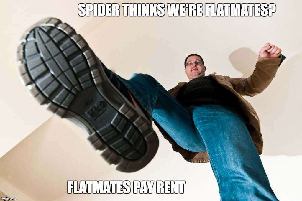 spider flatmate | SPIDER THINKS WE'RE FLATMATES? FLATMATES PAY RENT | image tagged in stomping man with big boots,spider,spiders,flatmate,flatmates,boot | made w/ Imgflip meme maker