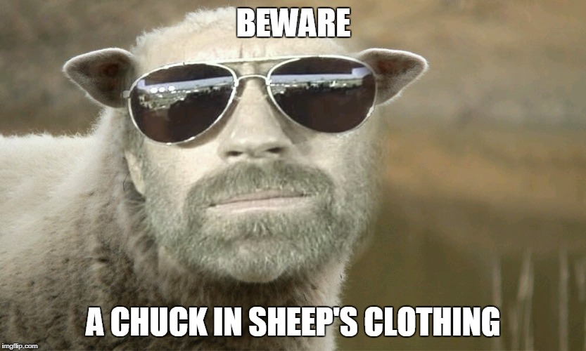 Chuck Norris sheep | BEWARE A CHUCK IN SHEEP'S CLOTHING | image tagged in chuck norris,memes,sheep | made w/ Imgflip meme maker