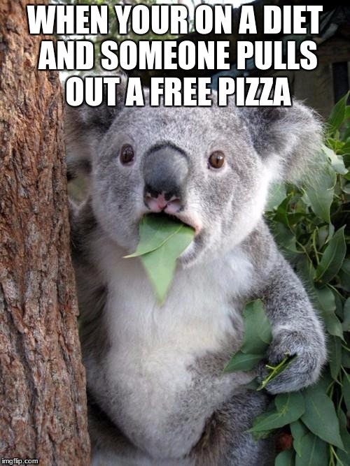 Surprised Koala Meme | WHEN YOUR ON A DIET AND SOMEONE PULLS OUT A FREE PIZZA | image tagged in memes,surprised koala | made w/ Imgflip meme maker