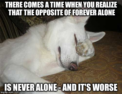 THERE COMES A TIME WHEN YOU REALIZE THAT THE OPPOSITE OF FOREVER ALONE IS NEVER ALONE - AND IT'S WORSE | made w/ Imgflip meme maker