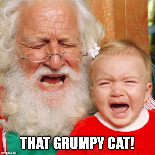 THAT GRUMPY CAT! | made w/ Imgflip meme maker
