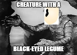 CREATURE WITH A; BLACK-EYED LEGUME | image tagged in creature from black lagoon | made w/ Imgflip meme maker