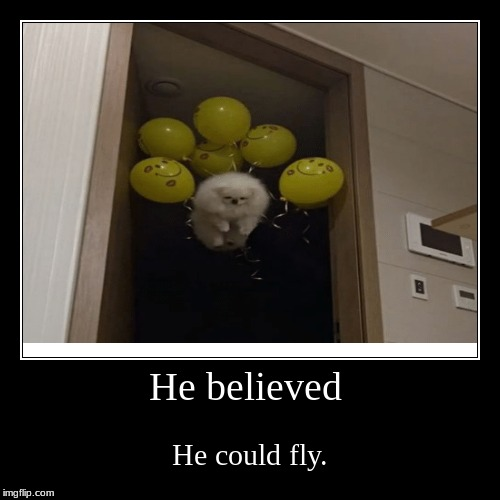 He believed | He could fly. | image tagged in funny,demotivationals | made w/ Imgflip demotivational maker