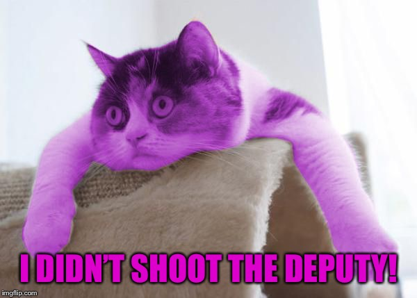 RayCat Stare | I DIDN'T SHOOT THE DEPUTY! | image tagged in raycat stare | made w/ Imgflip meme maker