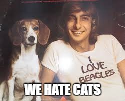 WE HATE CATS | made w/ Imgflip meme maker
