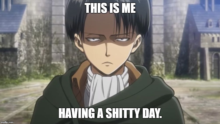 Levi, No | THIS IS ME HAVING A SHITTY DAY. | image tagged in levi,no | made w/ Imgflip meme maker