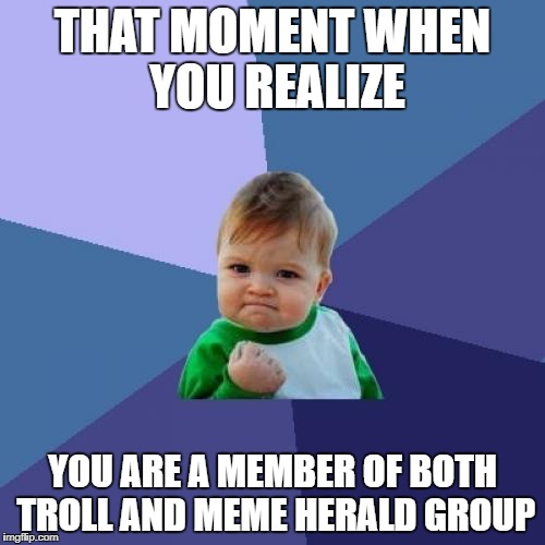 Success Kid Meme | THAT MOMENT WHEN YOU REALIZE YOU ARE A MEMBER OF BOTH TROLL AND MEME HERALD GROUP | image tagged in memes,success kid | made w/ Imgflip meme maker
