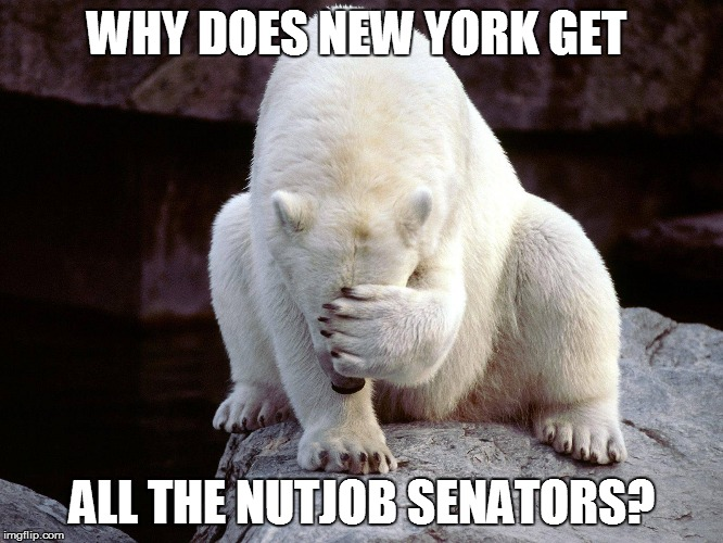 WHY DOES NEW YORK GET ALL THE NUTJOB SENATORS? | made w/ Imgflip meme maker