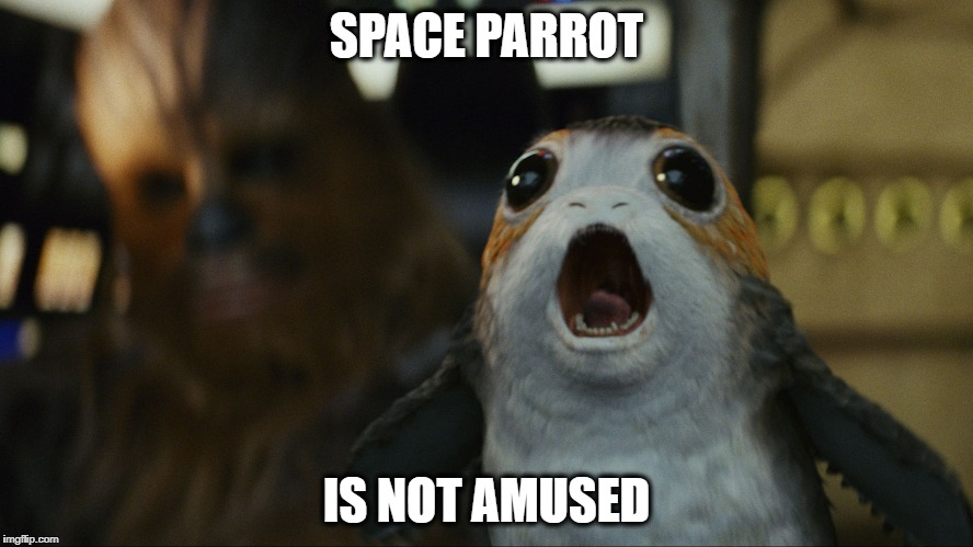 SPACE PARROT IS NOT AMUSED | image tagged in space parrot | made w/ Imgflip meme maker