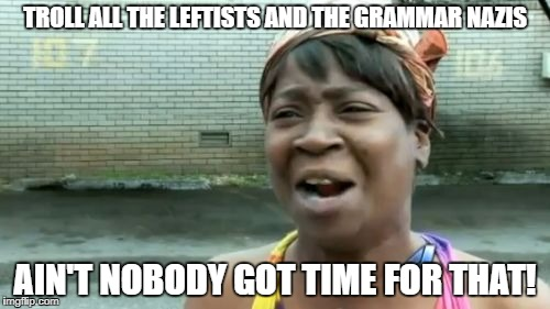 Aint Nobody Got Time For That Meme | TROLL ALL THE LEFTISTS AND THE GRAMMAR NAZIS AIN'T NOBODY GOT TIME FOR THAT! | image tagged in memes,aint nobody got time for that | made w/ Imgflip meme maker