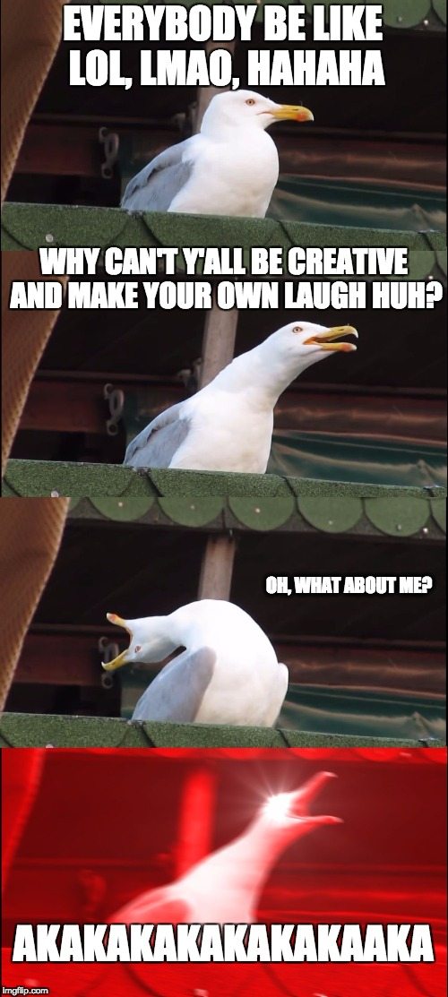 AKAKAKAAKAKAKA | EVERYBODY BE LIKE LOL, LMAO, HAHAHA WHY CAN'T Y'ALL BE CREATIVE AND MAKE YOUR OWN LAUGH HUH? OH, WHAT ABOUT ME? AKAKAKAKAKAKAKAAKA | image tagged in inhaling seagull | made w/ Imgflip meme maker