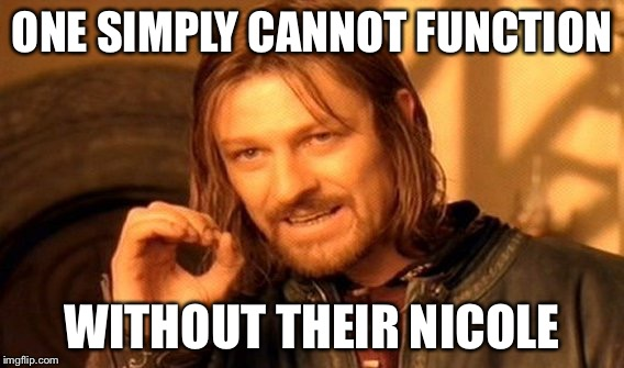 One Does Not Simply Meme | ONE SIMPLY CANNOT FUNCTION WITHOUT THEIR NICOLE | image tagged in memes,one does not simply | made w/ Imgflip meme maker