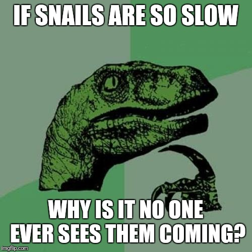 It's like BAM! There's a snail! | IF SNAILS ARE SO SLOW WHY IS IT NO ONE EVER SEES THEM COMING? | image tagged in memes,philosoraptor | made w/ Imgflip meme maker