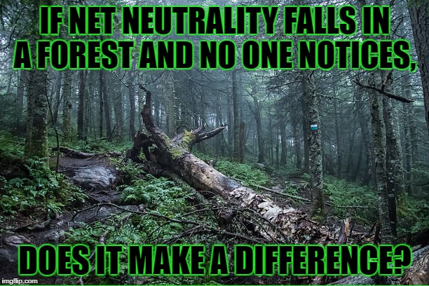 IF NET NEUTRALITY FALLS IN A FOREST AND NO ONE NOTICES, DOES IT MAKE A DIFFERENCE? | made w/ Imgflip meme maker