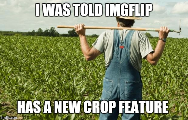 I'm going to celebrate as soon as I find it | I WAS TOLD IMGFLIP HAS A NEW CROP FEATURE | image tagged in farmer,crop feature | made w/ Imgflip meme maker